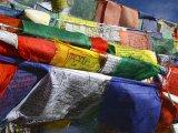 buddhist flag in wind