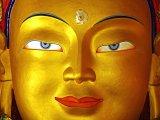 gold buddha face